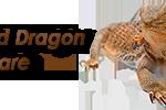 bearded-dragon-logo-300×100